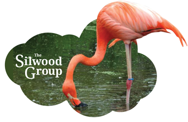 The Silwood Group